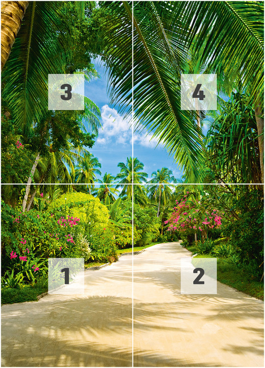 TROPICAL PATHWAY Wall Mural Buy at EuroPosters