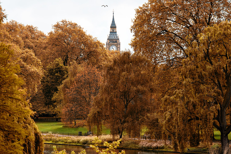 View of St James's Park Lake with Big Ben Wallpaper Mural
