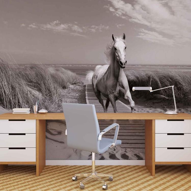 White Horse Beach Grey Wallpaper Mural