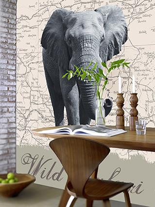 WILD SAFARI Wallpaper Mural