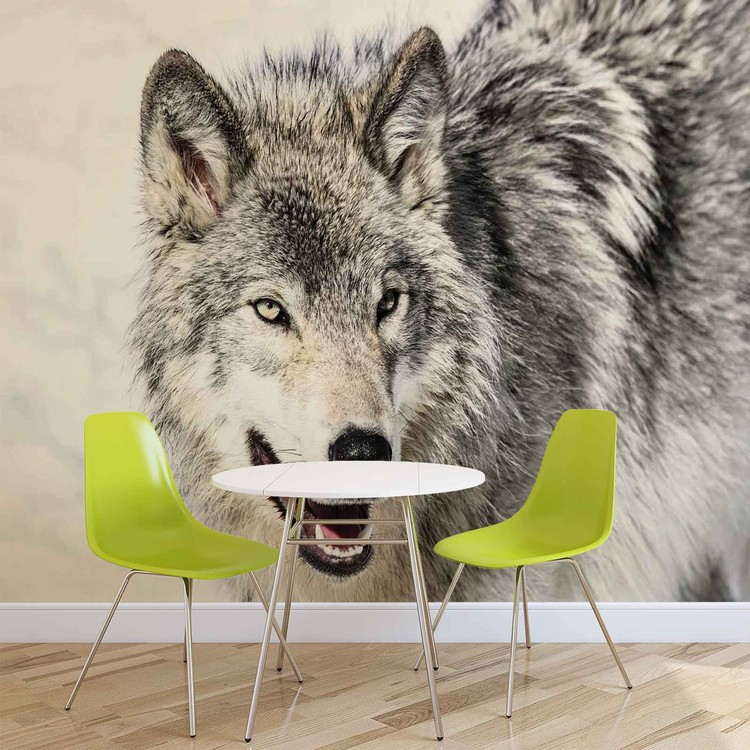 Wolf Animal Wallpaper Mural