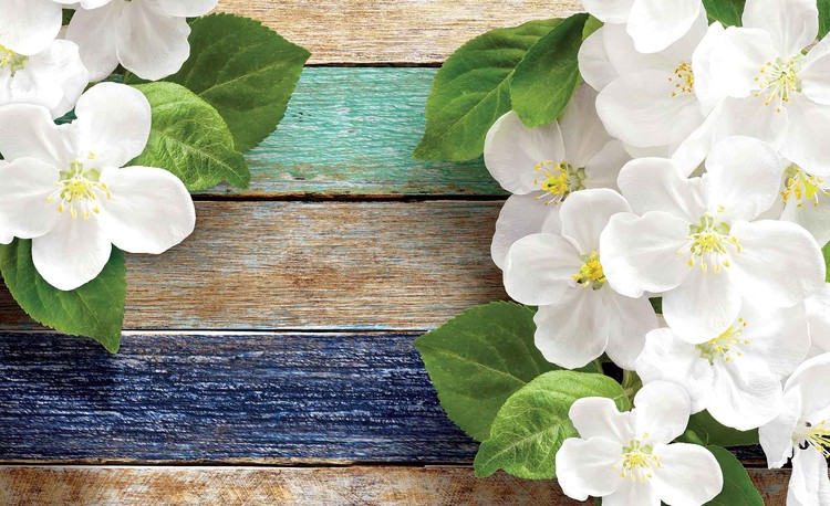 Wood Fence Flowers Wallpaper Mural