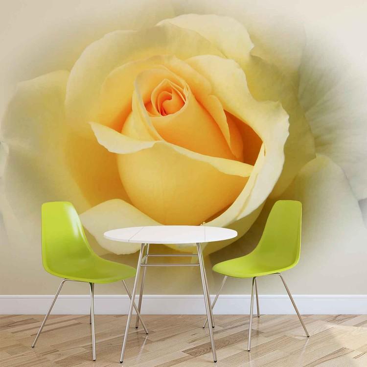 Yellow Rose Wallpaper Mural