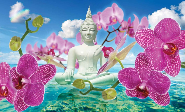 Zen Flowers Orchids Buddha Water Sky Wallpaper Mural